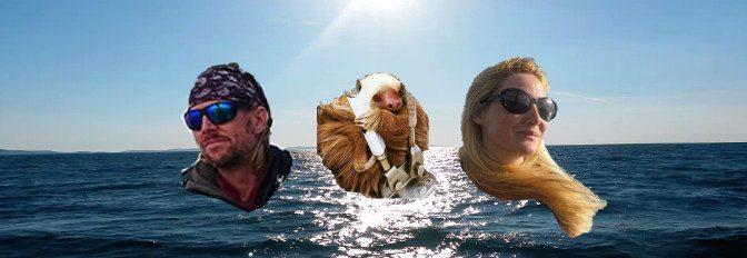 Atlantiküberquerung made easy – Interview mit The Sailing Seatramp